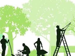 CARSON Garden and Grounds Maintenance